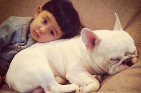 a-boy-and-his-bulldog