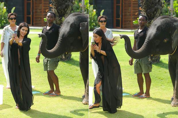kim_kardashian with an elephant