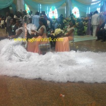President Jonathan's Daughter's Reception Photos egosentrik.com 2